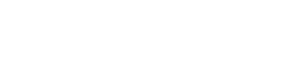 BEETLE CABRIOLET EVENTS